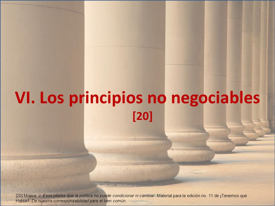 VI. Los principios no negociables [20]